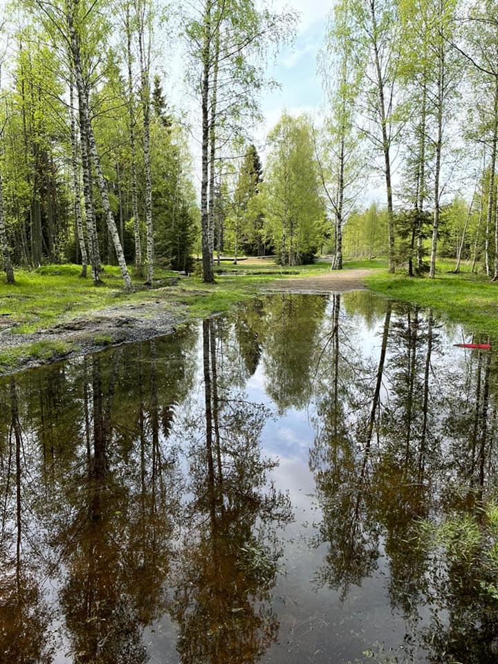 Tampereen Frisbeegolfkeskus väylä 22 lainehtii