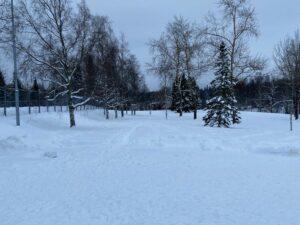 Vihiojan Frisbeepuisto Uusi Väylä 1 - Talvi